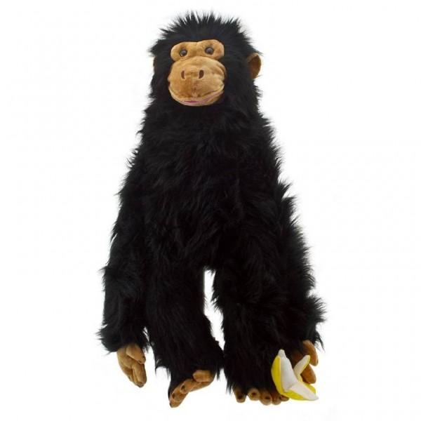 Pupazzo Chimpanzee 70cm