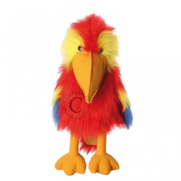 Pupazzo pappagallo  40Cm