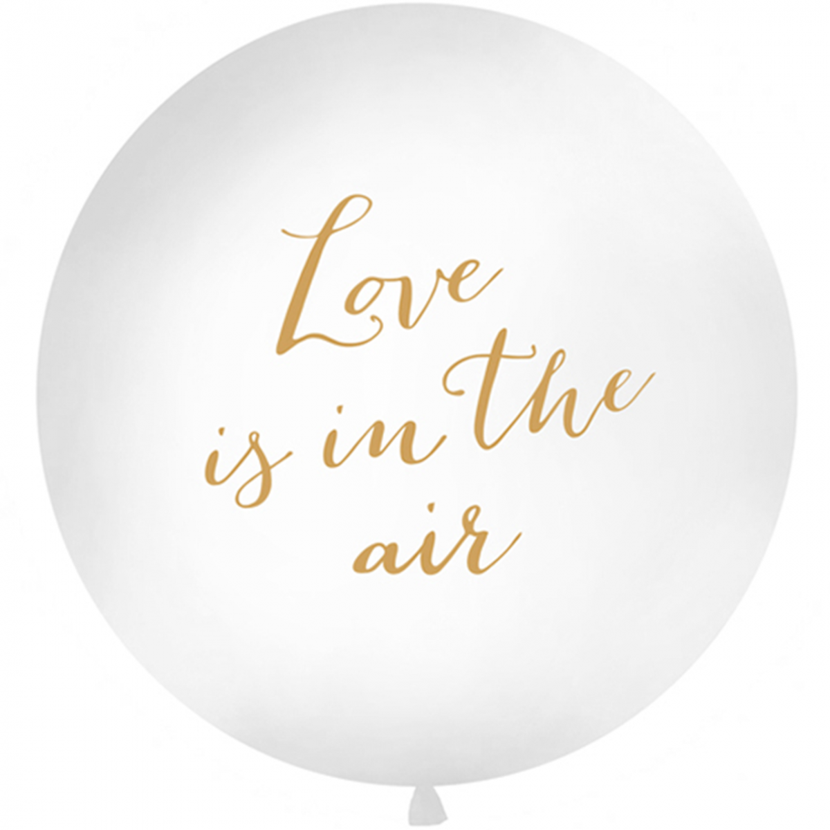 Palloncino mongolfiera 1mt - Love is in the air